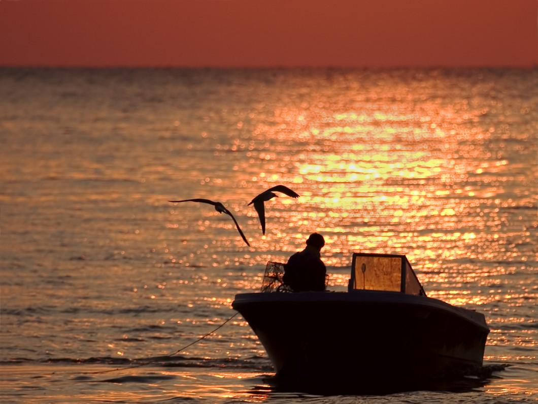 Offshore, Oil Rig , Inland Water Injuries, Jones Act